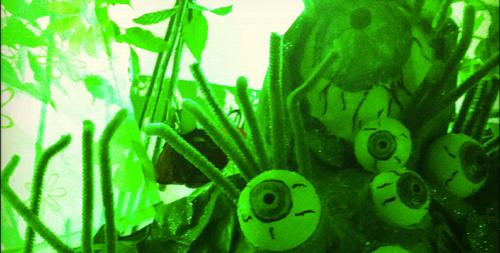 Alienaugen im Deko-Dschungel.